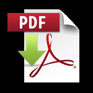 Dokument im PDF-Format